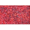 Seedbead 10/0 Mix Red Lustered Loose